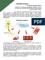 Células tronco atividadess