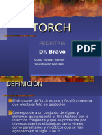 torch-090509163954-phpapp02.pptx