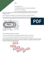 Questões Virus e Bacterias
