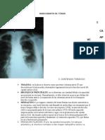 placa de torax preg 3 contenido.docx