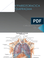 Pleura , Torax y Diafragma