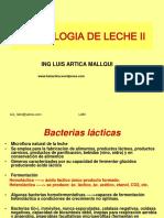 Bacterias Lacticas