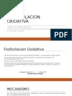FOSFORILACION OXIDATIVA
