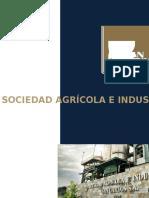 Proyecto Integrador Sociedad Agrícola e Industrial San Carlos S.a.
