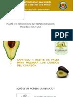 Presentación canvas promo.pptx