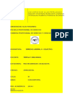 209507045-DERECHO-COLECTIVO-II-docx.docx