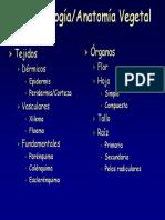 Repaso_histologia_Vegetal.pdf