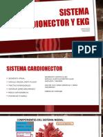 Sistema Cardionector y Ekg