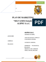Plan de Marketing Selvamix Frutado