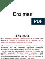 CAP 4. Enzimas.okok