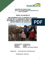 proyecto vacuno occoro.pdf