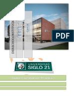 Efip 1 - Constitucional.docx.PDF