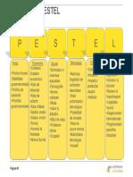 Analiza_PESTEL.pdf