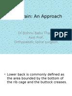 Back Pain an Approach