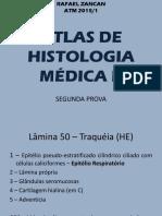Atlas de histologia (FOTOS).pdf