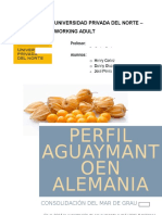Aguaymanto - Perfil - Comercio Exterior.docx