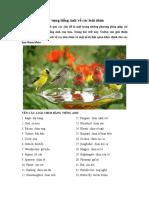 Từ vựng các loài chim.pdf
