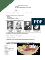 Guía act. 1° celula IMPRI.doc