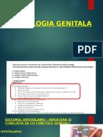 A a. axa HPG