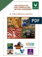 Lion Tb Risk Report Final