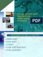 Organizacion Gestion