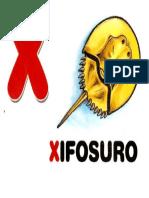 x Xisofuro