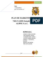 Plan de Marketing Selvamix Frutado Final
