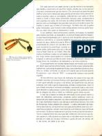História geral da arte no Brasil (PAG 81- PAG 105)