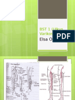 BST 1 (Ulkus Varikosum) REVISI.pptx