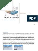 Identificacion Proyecto provisur