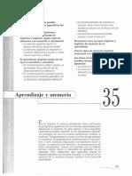 Kandel, E., Schwartz, J., & Jessell, T. (1999). Aprendizaje y Memoria