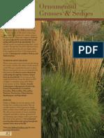 Grasses Helleborus