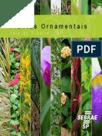 catalogo_plantas_ornamentais_Flor de Cactos..pdf