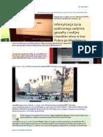 Manifestacja Przeciwko Brutalnosci Policji Wroclaw 1.06.2017 Dzien Dziecka Infantylizacja Zycia Publicznego 20170529 ME SOWA Spalic Kukle Piotra Rybaka, Falszywego Polaka!