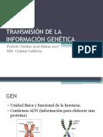 01 Transmision de Inf Genetica 1