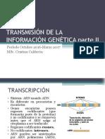 02 Transmisión de la información genética-DESARROLLO GENÉTICO.pdf