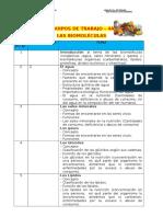 EQUIPOS DE TRABAJO-4A-BIOMOLECULAS.doc