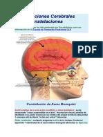 Constelaciones Cerebrales otras cstegoris.docx