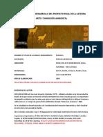 EJEMPLO PARA EL DESARROLLO DEL PROYECTO FINAL DE LA CATEDRA.pdf