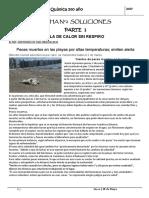 Ficha N° 2 SOLUCIONES   2017.pdf