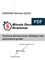 German Nouns Feminine