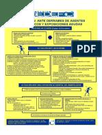 Gedefo Poster Derrames Vs3 2010