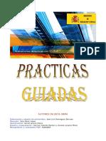 Guimp-practicasguiadas.pdf