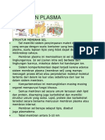 Anatomi - Membran Plasma