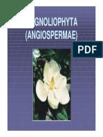 05-divisi-magnoliophyta-01.pdf