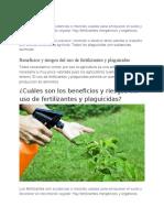Los+fertilizantes+son.docx