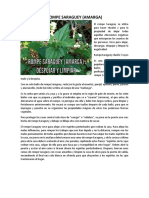 AMARGA - ROMPE SARAGUEY.pdf