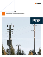 BKW Smart Grid Systematik