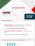 Carrera docente - diagnostico.pdf