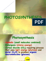 Ppt Photosynthesis OK